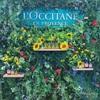 L'Occitane × WWD BEAUTY / 大人気シリーズ【ロクシタン】ファイブハーブスリペアリングインテンシヴオイル
