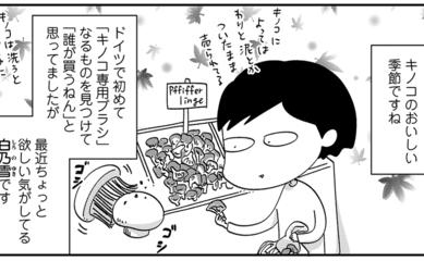 白米からは逃げられぬ ~ドイツでつくる日本食、いつも何かがそろわない~ 第14話「いろんな干しキノコ」