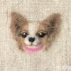 【シェリーちゃんの首輪飾り】羊毛フェルト刺しゅうの犬・パピヨン