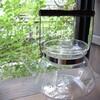 一度は使ってみたいガラスのケトル