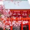 「ちはやふる」の聖地 近江神宮に行ってみた!