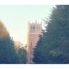 早稲田大学に入りたいなら大学受験がおすすめ!その4つの理由