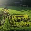 楢葉の田んぼアート2019!オリンピック聖火リレー出発の地