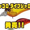 【EVERGREEN】スモールタイプのシャロークランク「ピッコロ ダイブシャロー」発売!