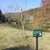 畜産センターに咲いていた十月桜。