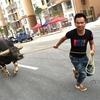 大通りで引かれる牛―凱里の闘牛王「眼鏡蛇」