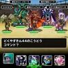 level.1606【無制限】第192回闘技場ランキングバトル5日目