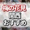 花見で梅は大阪城公園の梅園だけでない 関西の梅が綺麗なところ15選
