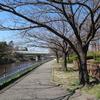荒子川公園 2020.3.23
