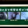 【タモリ倶楽部】「美の巨◯ンたち?」銅像の股間表現に隠された芸術家たちの苦悩