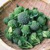 【ブロッコリー徹底解析!】栄養価、美容効果、種類、旬の時期、選び方、保存方法は??