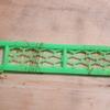 クモの巣で糸を作って釣りをする