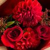 クリスマスにはお花を贈ろう