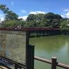 【歴史】北条家五代の拠点となった小田原城を散策/天守閣からの相模湾の眺めは最高