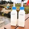 【チェジュ島】아침미소목장でイケメン牛にミルクやり