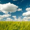 雲形と仮小屋形の関わり方
