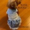 犬のお洋服。激カワワンピース第2段!惚れるなよw
