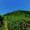 谷川連峰西端のキスゲ咲く三国山