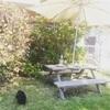 庭でクレープピクニック