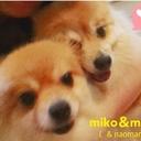 naomako&mikoブログ