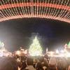 横浜赤レンガでクリスマスマーケットがスタート!ツリーがとてもキレイです
