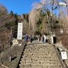 2020年1月2日 妙義神社