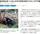伊豆半島でクマ出没!西伊豆町のツキノワグマは何処から来たのか?目撃情報は正しかった!