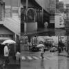 雨の小田原 #1