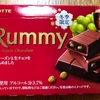 LOTTE Rummy ラムレーズンチョコレート
