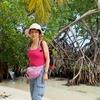 ベリーズ 背景は島のマングローブ