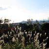 11月の『紀伊風土記の丘』<06>ヤッホー!「紀淡海峡」ヤッホー!「和歌山市街」