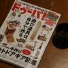 ドゥーパ10月号が発売されています。かなり面白いです。