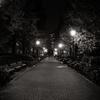 [ま]眠れぬ夜に金木犀 @kun_maa