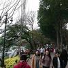 【ハノイ旅行】東南アジア卒業旅行~人形劇からナイトマーケットまで満喫~