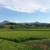 早起きは三文の徳♡and田舎のくらし うどん県♡
