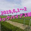 2019,6,1~2 トラックバイアス結果 (東京競馬場、阪神競馬場)