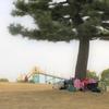 横浜市の自主保育を解説!横浜市で子育てするなら見ておきたい自主保育グループのまとめ