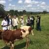 アフリカにおけるITの実用化は、地球を健全化するための大きなトリガーになる