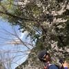 20170416_高尾山練習(初心者向け)