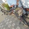 熱風!大阪湾サイクリング。