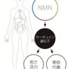 【大好評!NMN点滴 NMNの主な効果を解説します】