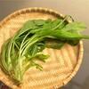 京野菜・壬生菜(みぶな)