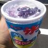 遂に行ったよ!超絶有名かき氷屋の「登泉堂」でブルーベリーミルクかき氷!【今治市】