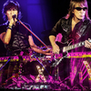 「B'z LIVE-GYM Pleasure 2013 ENDLESS SUMMER -XXV BEST-」 2014年1月29日リリース決定!!