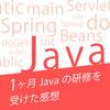 1ヶ月Javaの研修を受けて見えてきたJava/Rubyそれぞれの言語を学ぶメリットデメリット