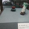 故宮博物館で翠玉白菜や肉型石が見つからない?それなら南部院区にあるかもしれない