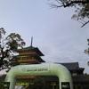 Shodai Adventure Mountain