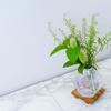 草花グリーンをガラス花器に入れてさわやかに!