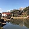 梅の花を見に、国指定名勝及び史跡東京大学小石川植物園に行ってみた。(文京区白山)