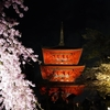 春の1泊2日京都旅行(1日目)